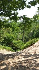 Mt. Jackson Scene